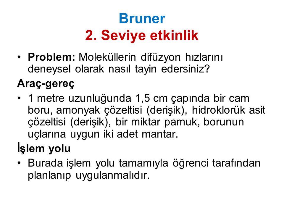 Bruner 2. Seviye etkinlik