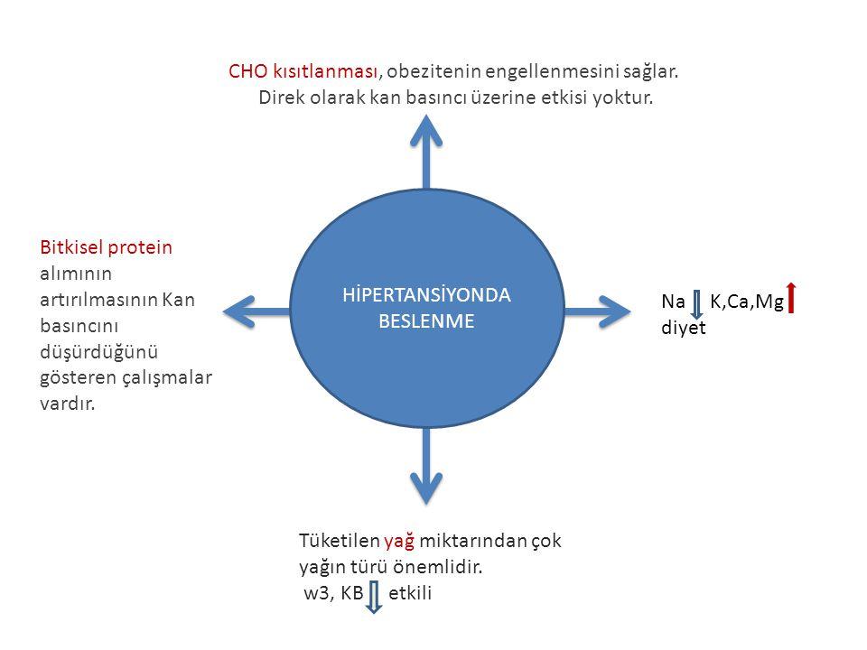 CHO kısıtlanması, obezitenin engellenmesini sağlar