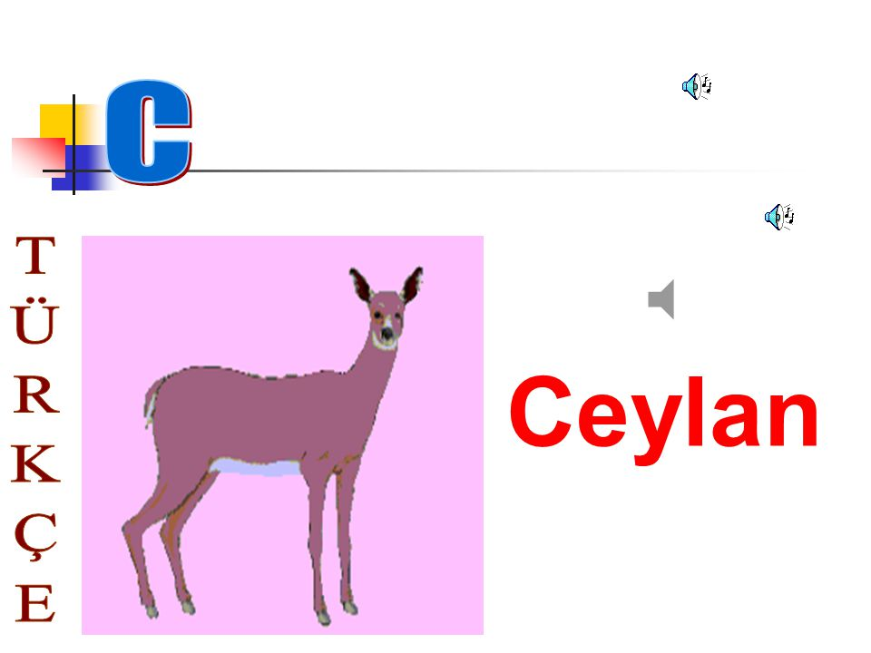 C Ceylan TÜRKÇE