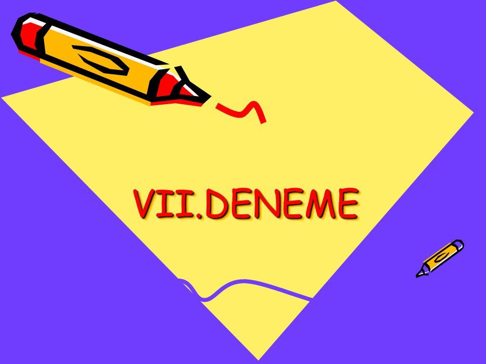 VII.DENEME