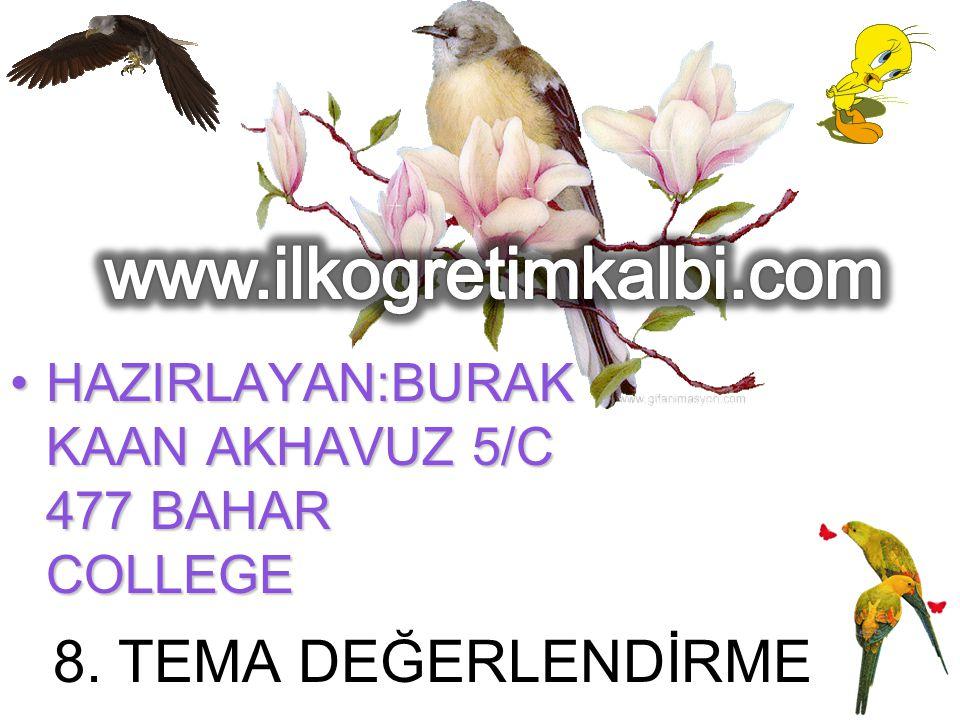 www.ilkogretimkalbi.com 8. TEMA DEĞERLENDİRME