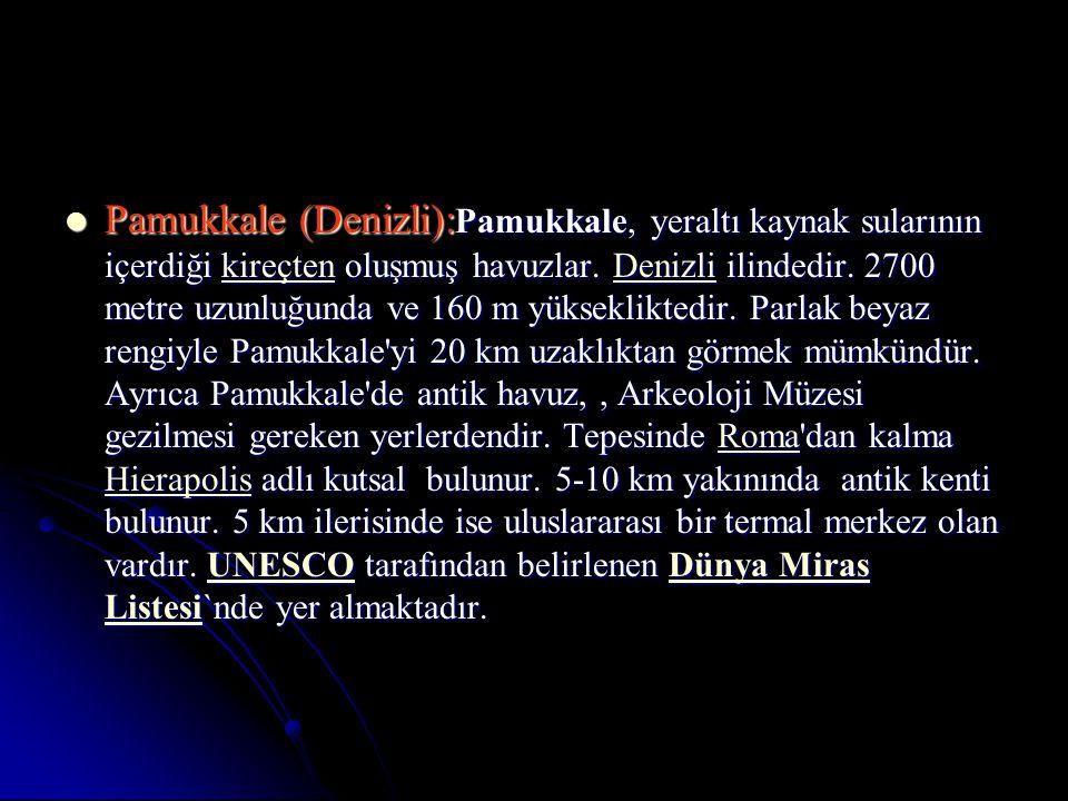 Pamukkale (Denizli):Pamukkale, yeraltı kaynak sularının içerdiği kireçten oluşmuş havuzlar.