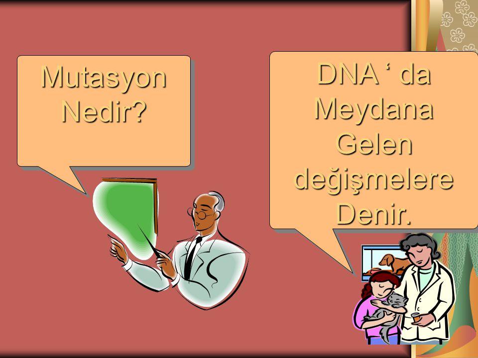 DNA ' da Meydana Gelen değişmelere Denir. Mutasyon Nedir
