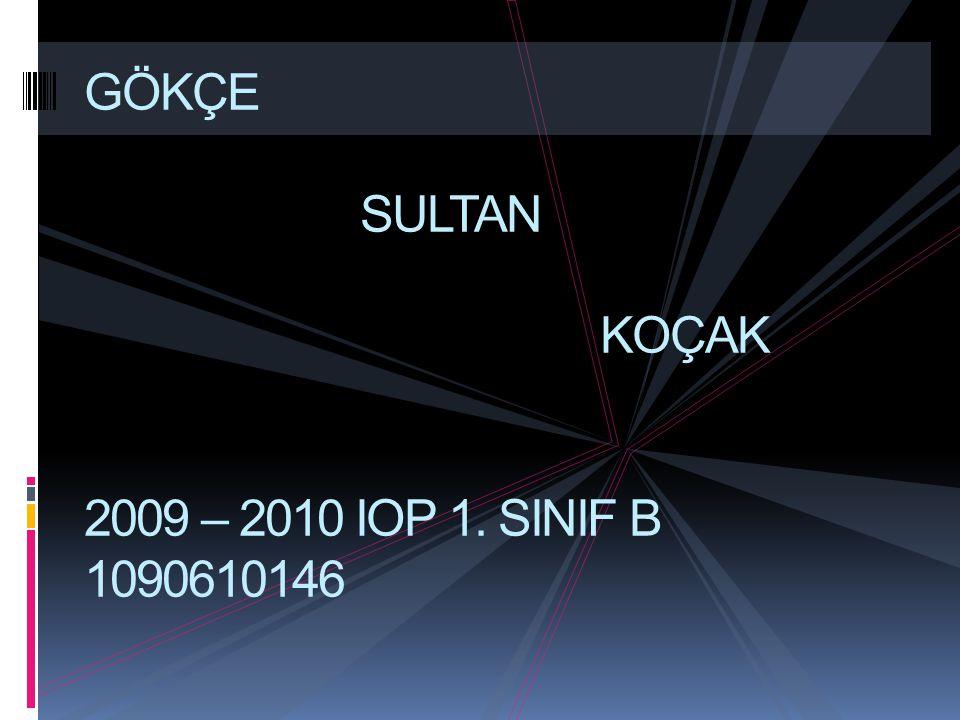GÖKÇE SULTAN KOÇAK 2009 – 2010 IOP 1. SINIF B 1090610146