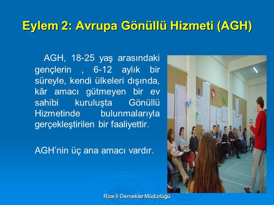 Eylem 2: Avrupa Gönüllü Hizmeti (AGH)