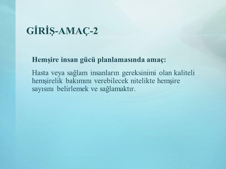 GİRİŞ-AMAÇ-2