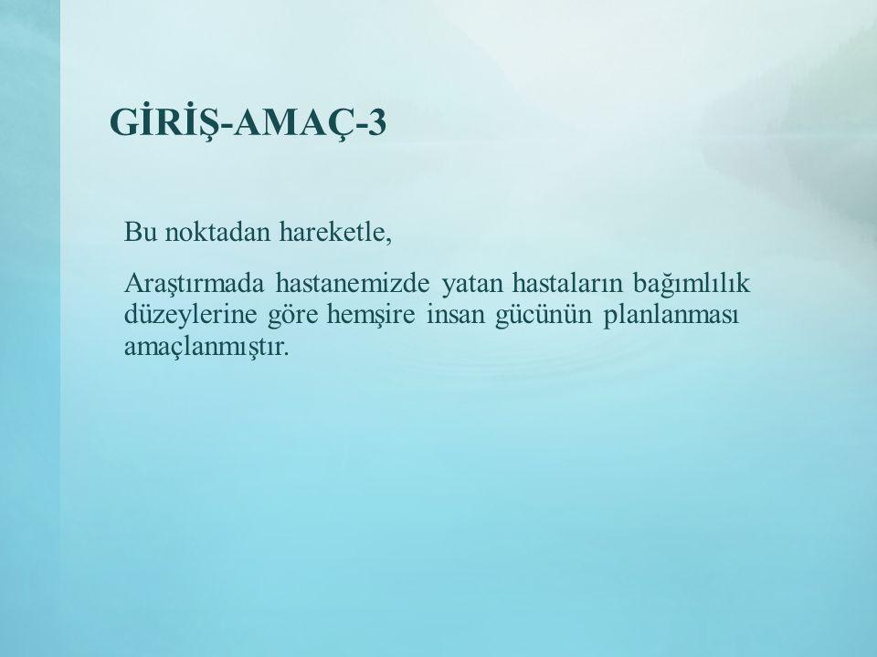 GİRİŞ-AMAÇ-3