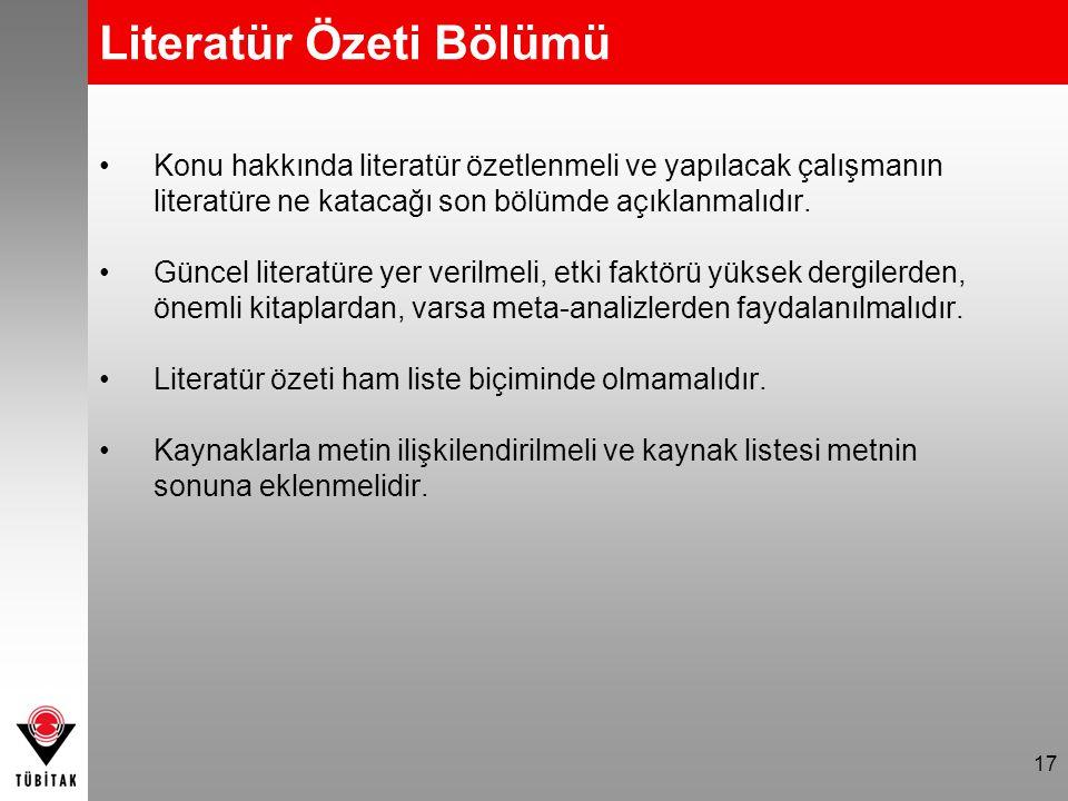 Literatür Özeti Bölümü