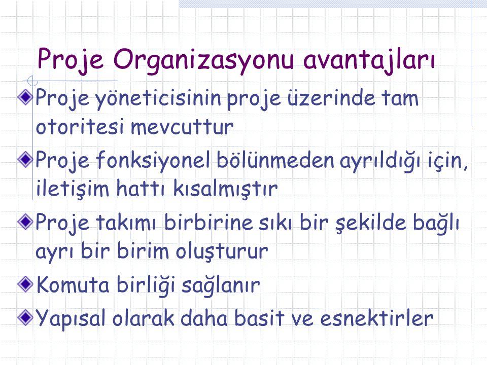Proje Organizasyonu avantajları