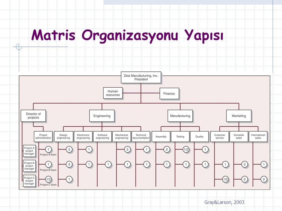 Matris Organizasyonu Yapısı