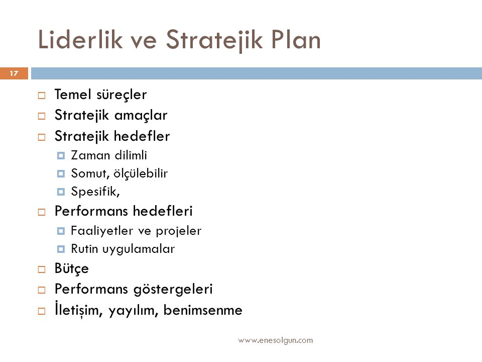 Liderlik ve Stratejik Plan