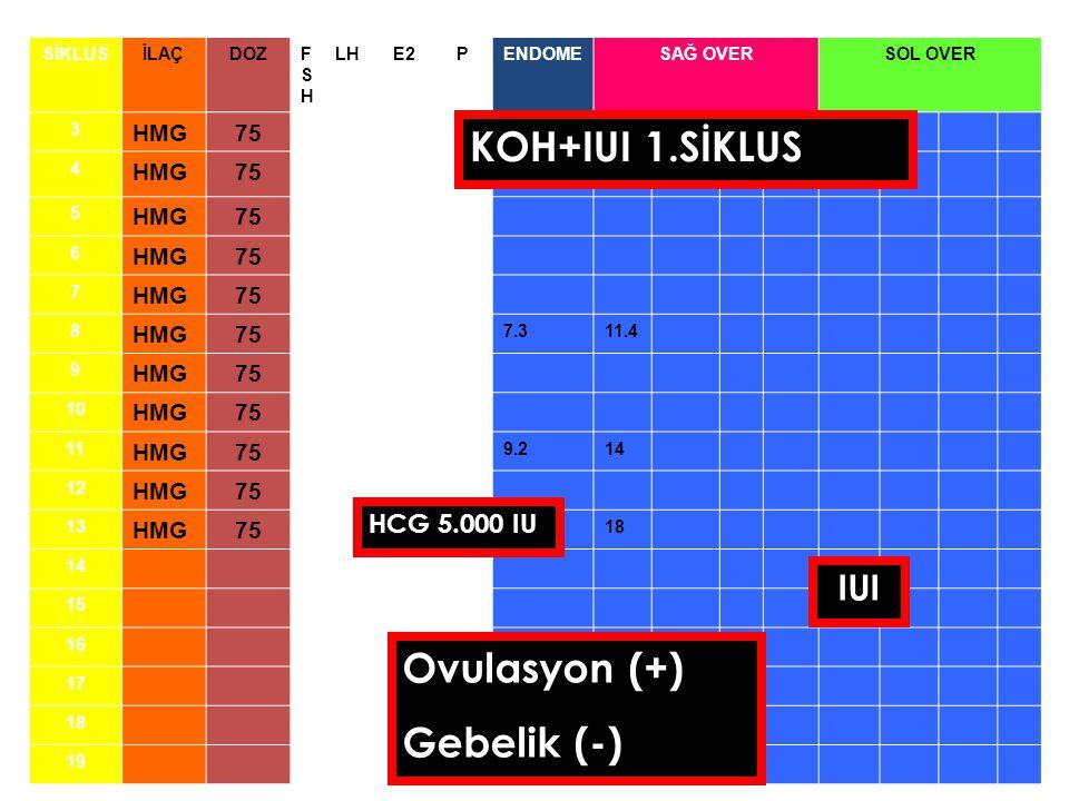 KOH+IUI 1.SİKLUS Ovulasyon (+) Gebelik (-) IUI HCG 5.000 IU HMG 75