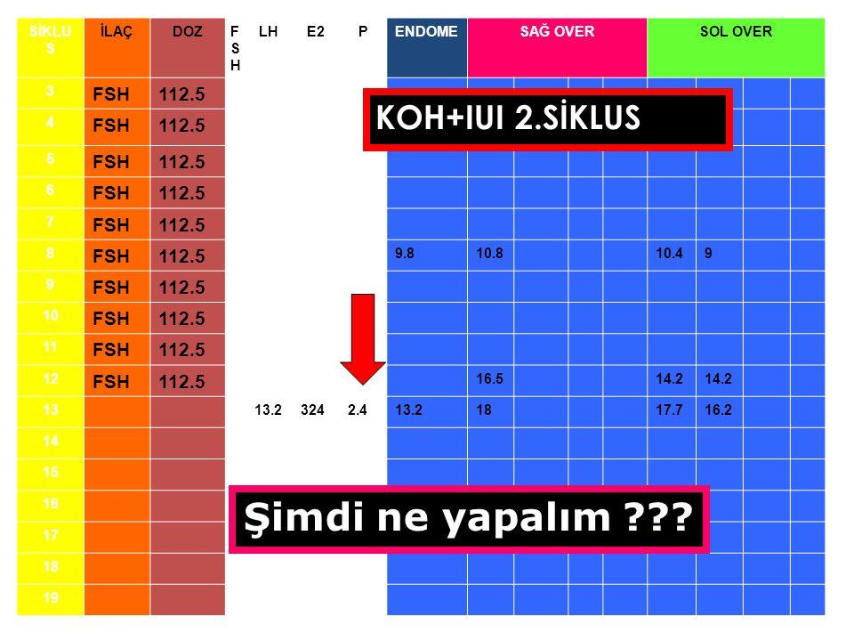 Şimdi ne yapalım KOH+IUI 2.SİKLUS 112.5 SİKLUS İLAÇ DOZ FSH LH E2