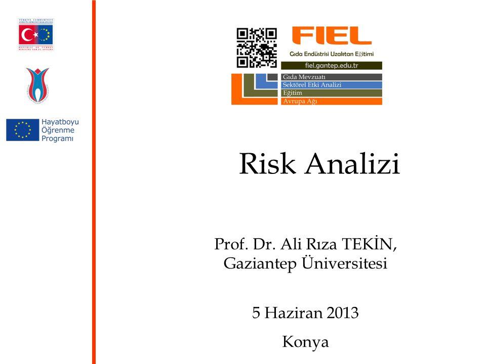 Prof. Dr. Ali Rıza TEKİN, Gaziantep Üniversitesi