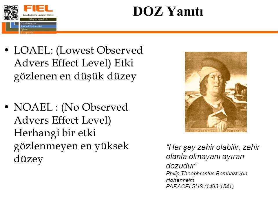 DOZ Yanıtı LOAEL: (Lowest Observed Advers Effect Level) Etki gözlenen en düşük düzey.