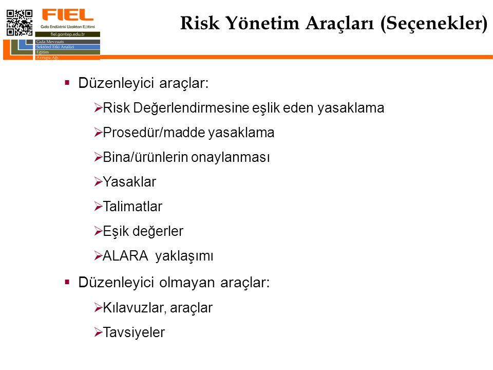 Risk Yönetim Araçları (Seçenekler)