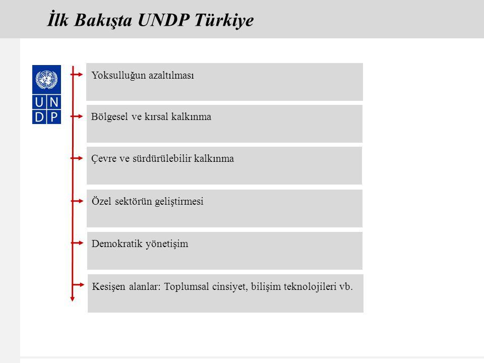 İlk Bakışta UNDP Türkiye