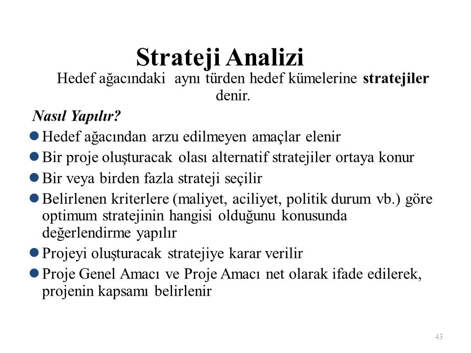 Hedef ağacındaki aynı türden hedef kümelerine stratejiler denir.