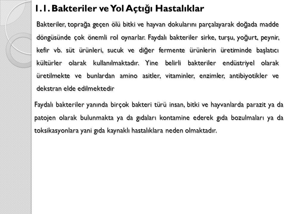 1.1. Bakteriler ve Yol Açtığı Hastalıklar