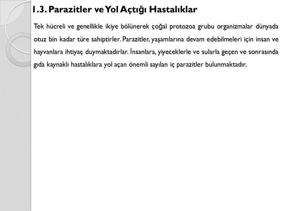 1.3. Parazitler ve Yol Açtığı Hastalıklar