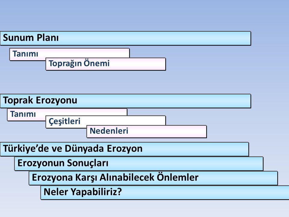Türkiye'de ve Dünyada Erozyon Erozyonun Sonuçları