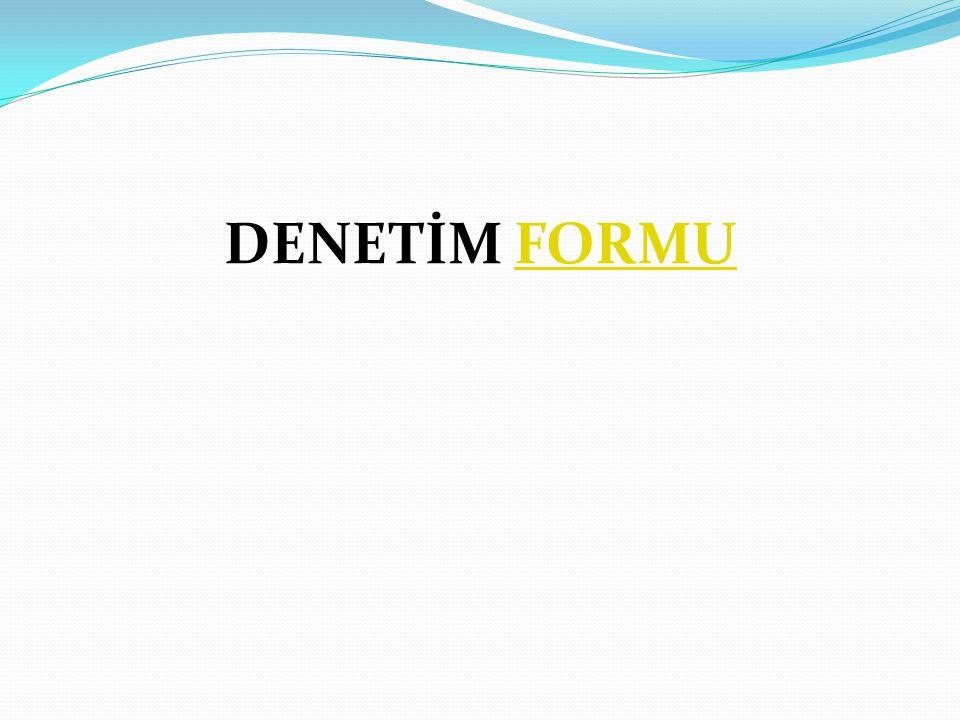 DENETİM FORMU