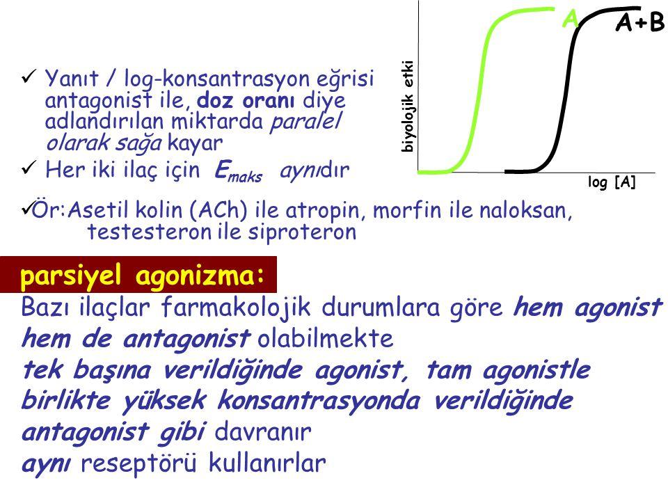 parsiyel agonizma: A A+B