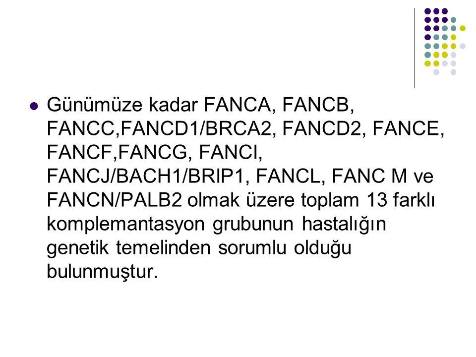 Günümüze kadar FANCA, FANCB, FANCC,FANCD1/BRCA2, FANCD2, FANCE, FANCF,FANCG, FANCI, FANCJ/BACH1/BRIP1, FANCL, FANC M ve FANCN/PALB2 olmak üzere toplam 13 farklı komplemantasyon grubunun hastalığın genetik temelinden sorumlu olduğu bulunmuştur.
