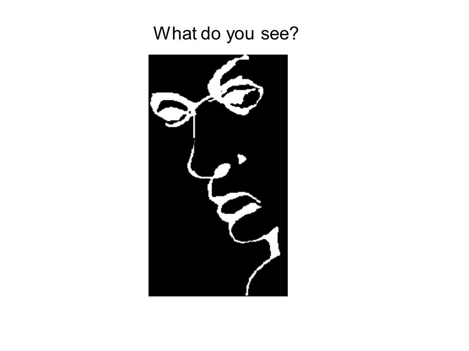 What do you see What do