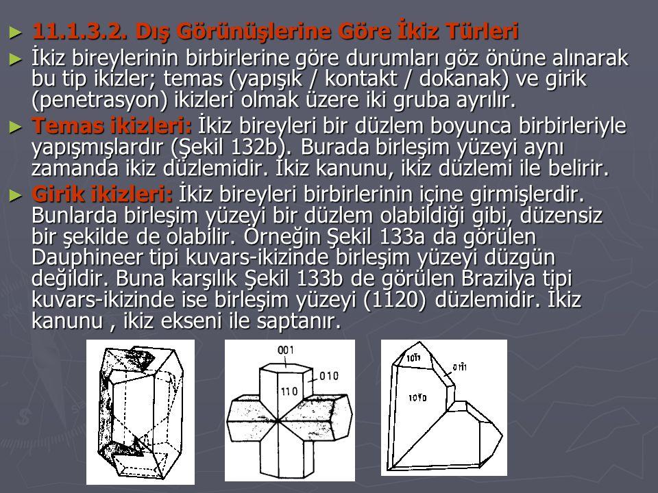 11.1.3.2. Dış Görünüşlerine Göre İkiz Türleri