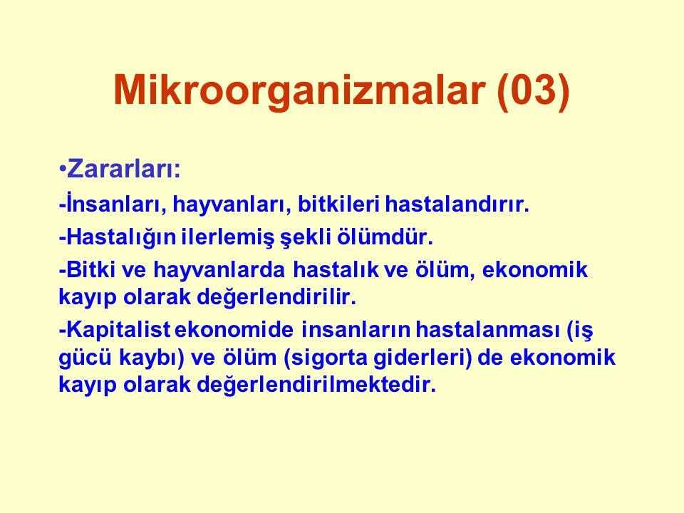 Mikroorganizmalar (03) Zararları: