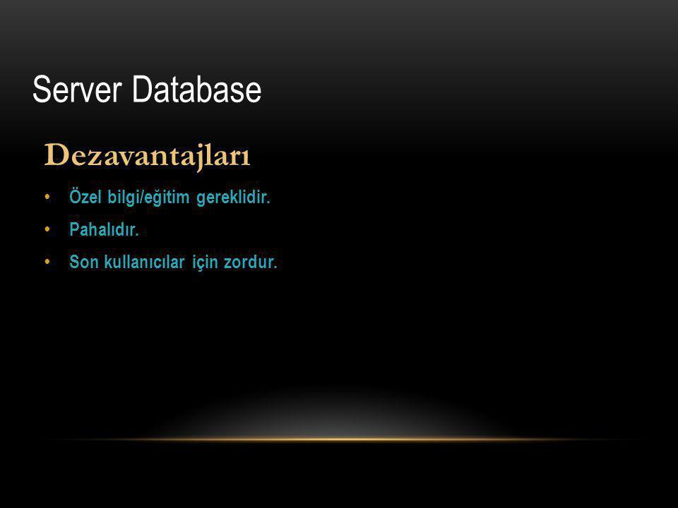 Server Database Dezavantajları Özel bilgi/eğitim gereklidir.