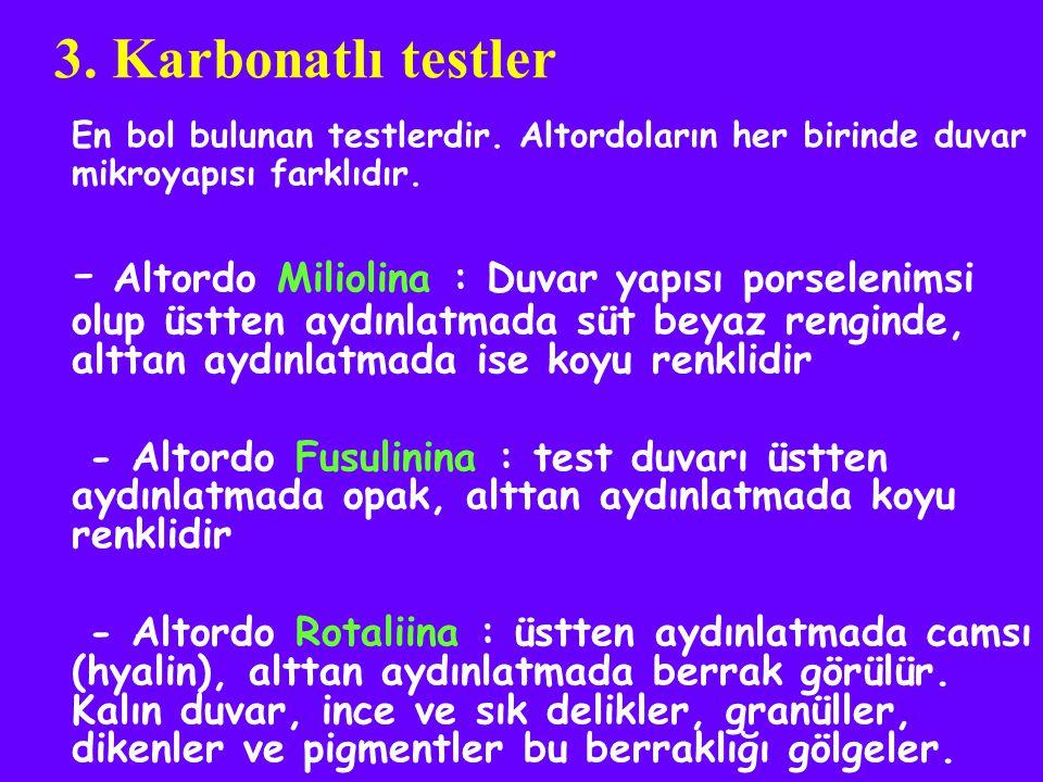 3. Karbonatlı testler En bol bulunan testlerdir. Altordoların her birinde duvar mikroyapısı farklıdır.