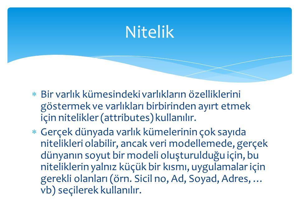 Nitelik Bir varlık kümesindeki varlıkların özelliklerini göstermek ve varlıkları birbirinden ayırt etmek için nitelikler (attributes) kullanılır.