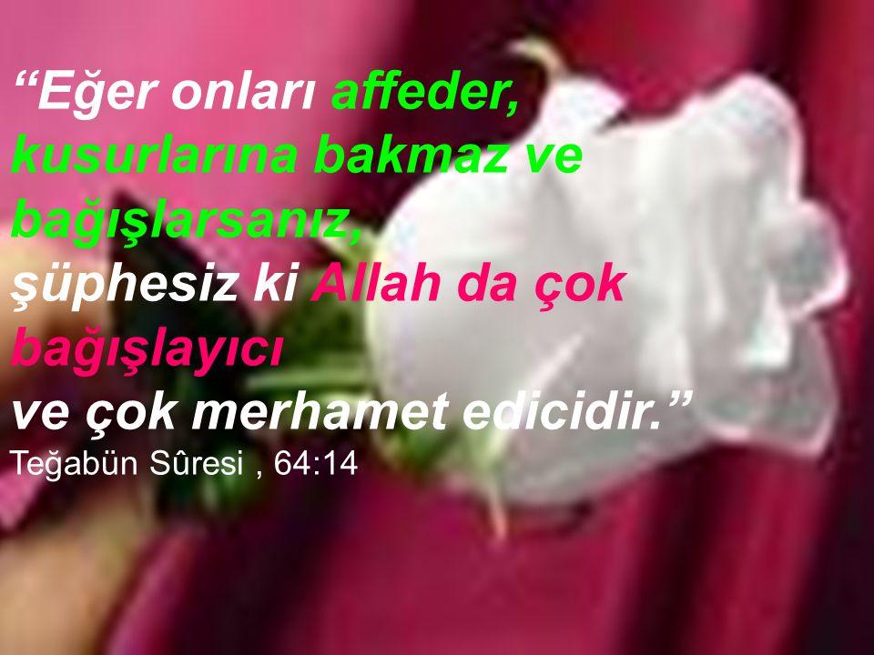 Eğer onları affeder, kusurlarına bakmaz ve. bağışlarsanız, şüphesiz ki Allah da çok bağışlayıcı.