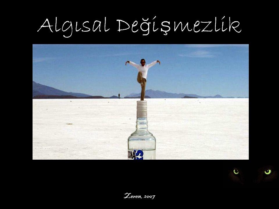 Algısal Değişmezlik Zeren, 2007