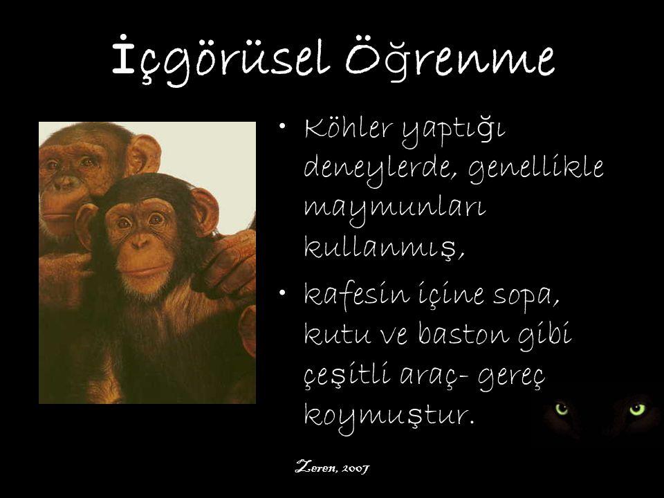İçgörüsel Öğrenme Köhler yaptığı deneylerde, genellikle maymunları kullanmış, kafesin içine sopa, kutu ve baston gibi çeşitli araç- gereç koymuştur.