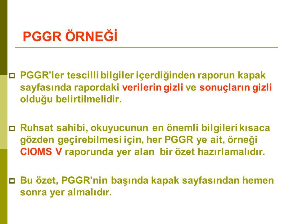 Bu özet, PGGR'nin başında kapak sayfasından hemen sonra yer almalıdır.
