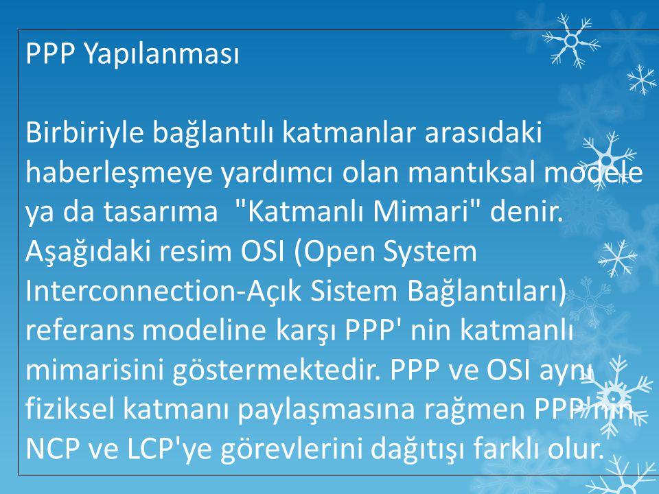 PPP Yapılanması