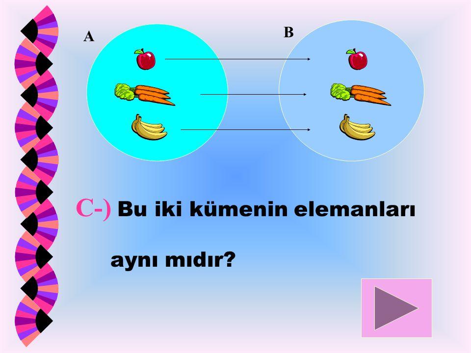 C-) Bu iki kümenin elemanları