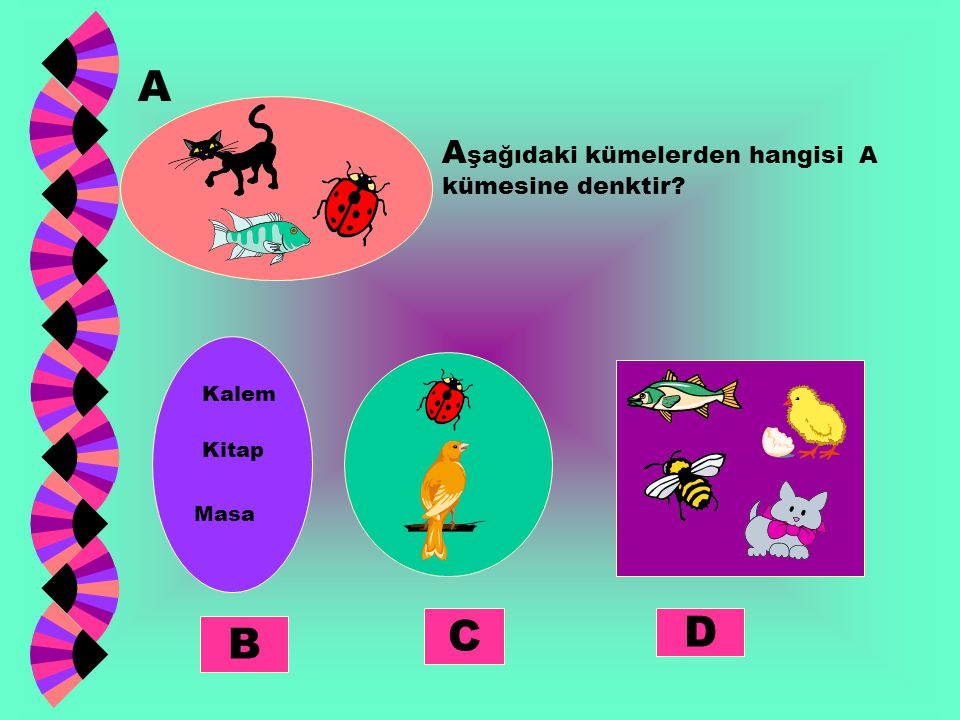 A C D B Aşağıdaki kümelerden hangisi A kümesine denktir Kalem Kitap
