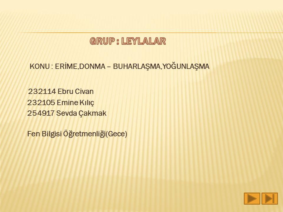 232114 Ebru Civan GRUP : LEYLALAR