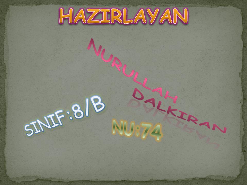HAZIRLAYAN DALKIRAN NURULLAH SINIF:8/B NU:74