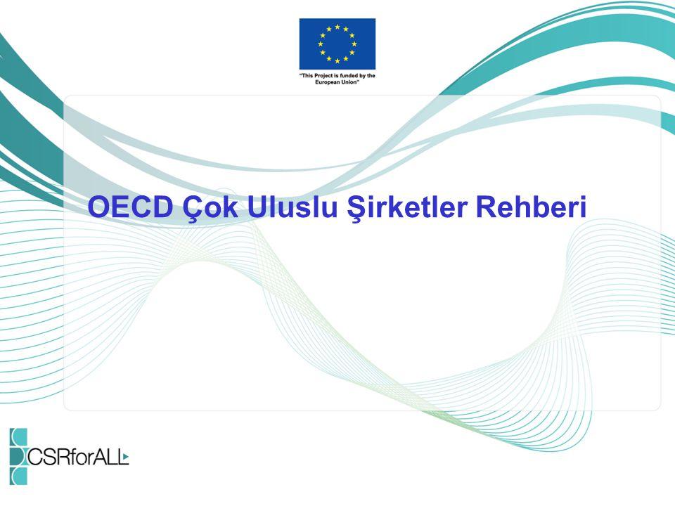 OECD Çok Uluslu Şirketler Rehberi
