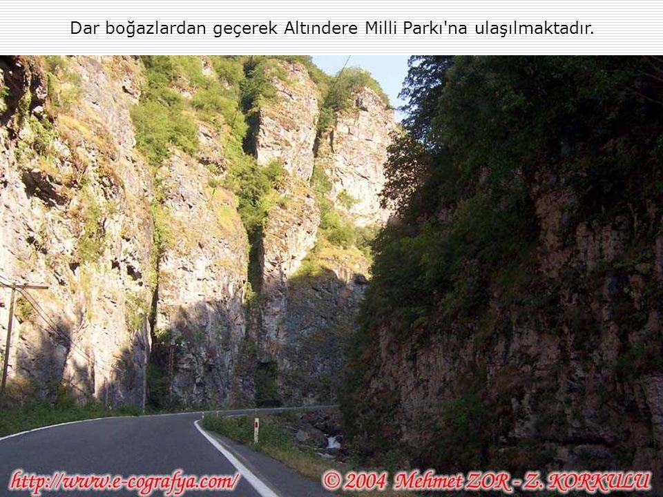 Dar boğazlardan geçerek Altındere Milli Parkı na ulaşılmaktadır.