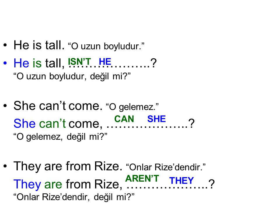 He is tall. O uzun boyludur.