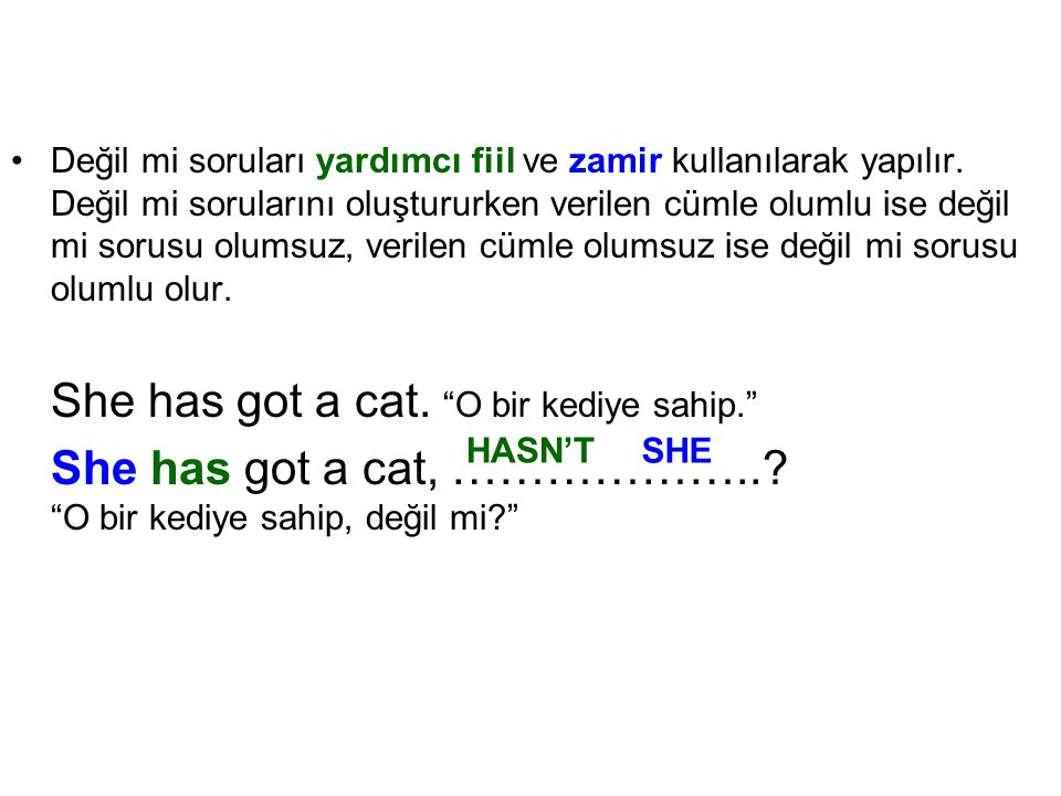 She has got a cat. O bir kediye sahip.