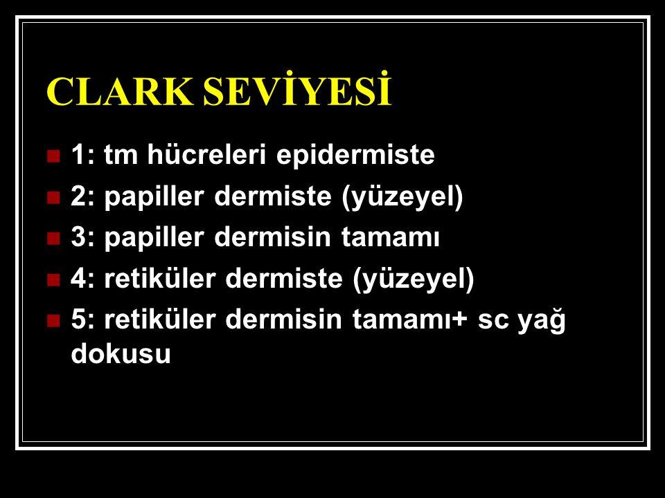CLARK SEVİYESİ 1: tm hücreleri epidermiste