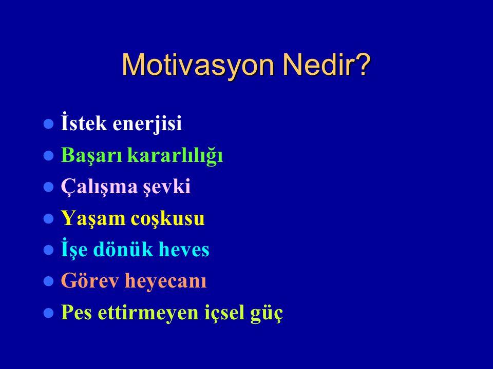 Motivasyon Nedir İstek enerjisi Başarı kararlılığı Çalışma şevki