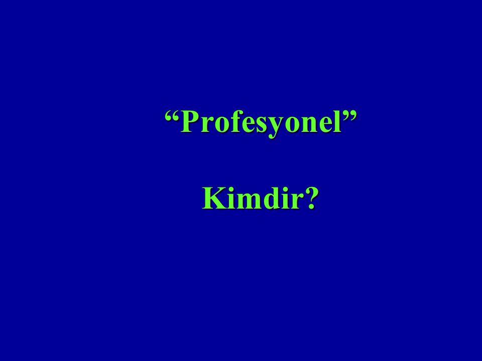 Profesyonel Kimdir 2